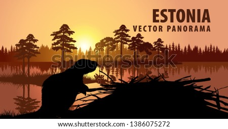 vector panorama of estonia with