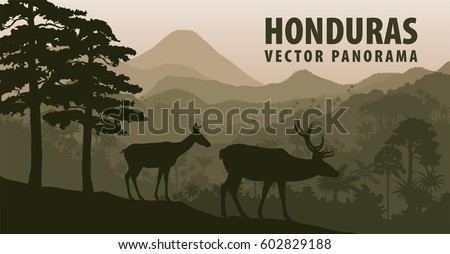 vector panorama of honduras
