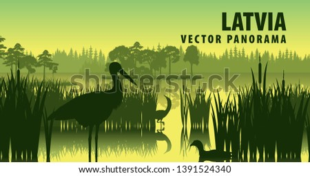 vector panorama of latvia with