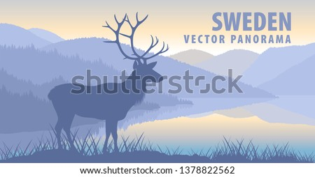 vector panorama of Sweden with  raindeer