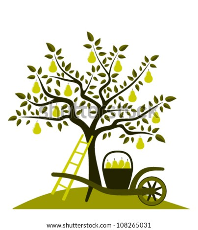 vector pear tree and hand barrow with basket of pears - stock vector