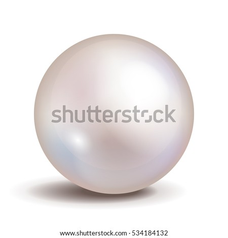 vector pearl isolated on white