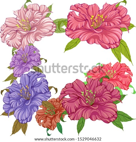 Vector. Peony flowers - decorative composition. Decorative elements. Use printed materials, patterns on fabrics, posters, postcards, packaging.