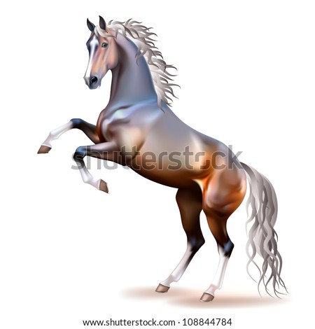 Vector photo-realistic silver bay horse rearing up isolated on white background