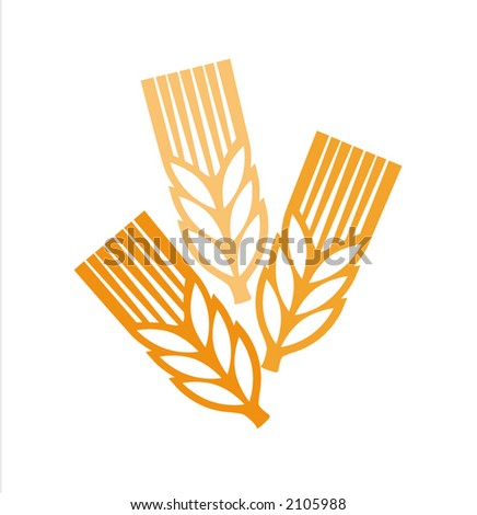 vector picture of a ears at white background