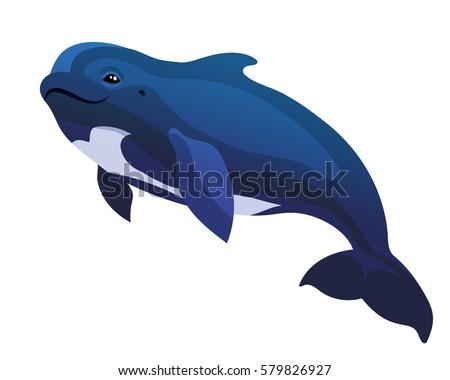 Stock Photo Vector pilot whale black dolphin Globicephala under water mammal