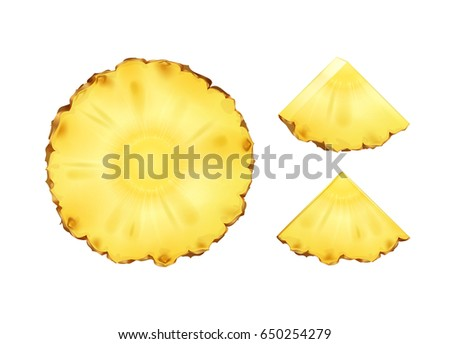vector pineapple round and