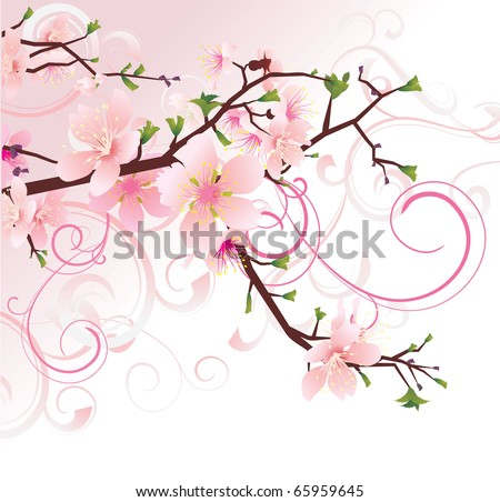 vector pink background with flourishes cherry tree blossoming brunch