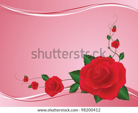 vector pink background with red rose