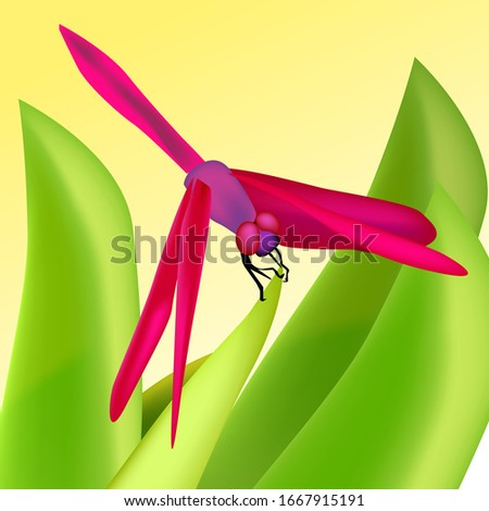 vector pink dragonfly