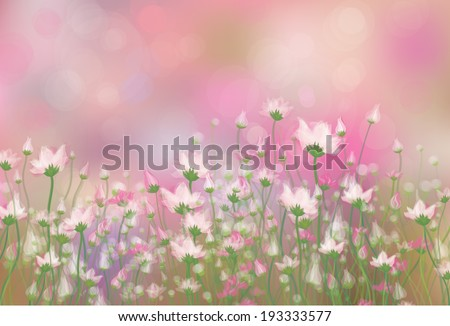 vector pink flowers on  bokeh
