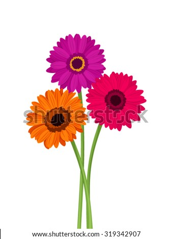 vector pink  orange and purple