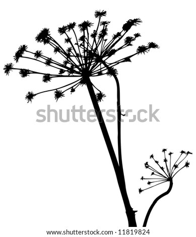 vector plants silhouettes - stock vector