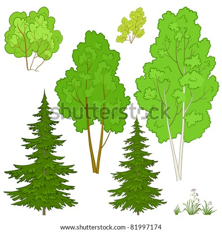 Vector, plants: trees and flowers, isolated on a white background