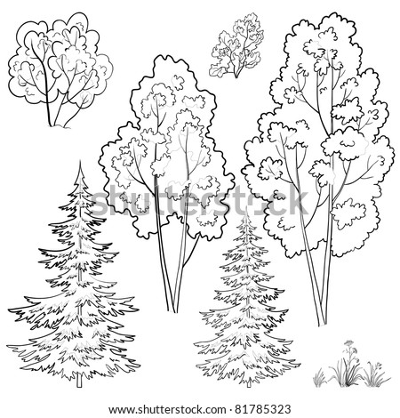 Vector, plants: trees and flowers, monochrome contours on a white background