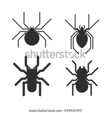vector poisonous spiders