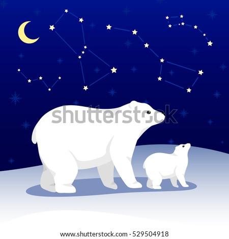 vector polar bear christmas new