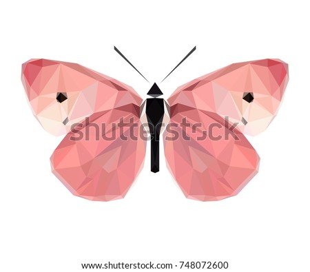 vector polygonal butterfly low