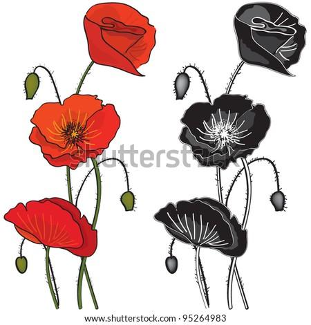 Flower Vector Black And White Vector Poppy Flowers in Black