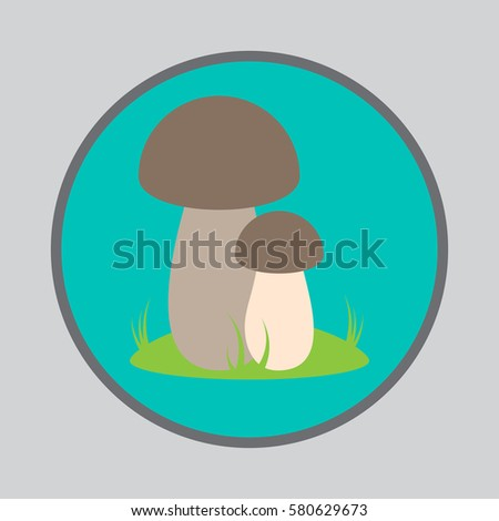 vector porcini mushrooms with