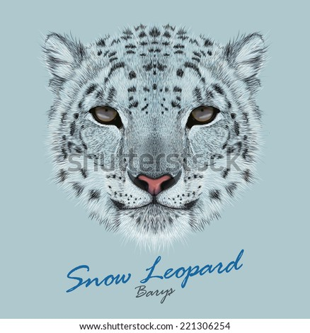 Stock Photo Vector Portrait of a Snow Leopard. Irbis or Barys in winter.