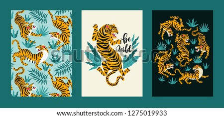 vector poster set of tigers and