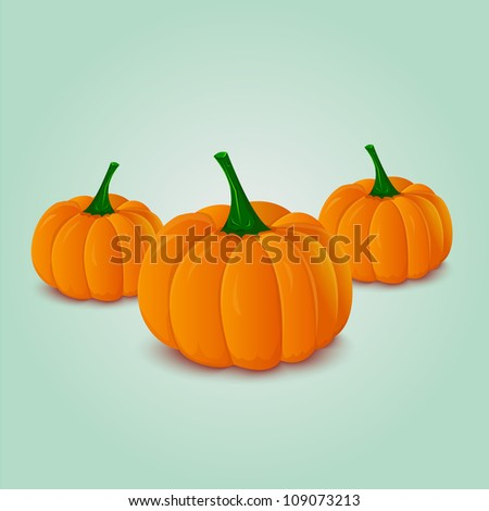 is pumpkin a fruit or a vegetable fruit in vagina