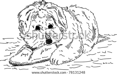vector - Puppy dog with shoes , hand draw