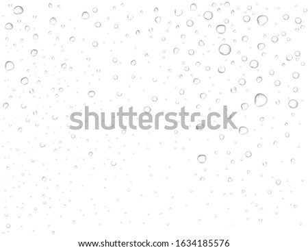 Vector rain drops on glass surface. Pure realistic droplets condensed on white background. Macro view