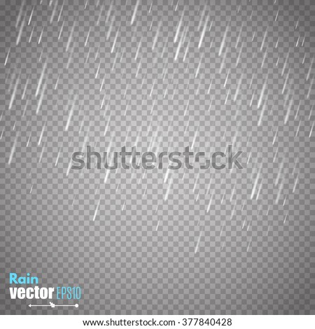 vector rain isolated on