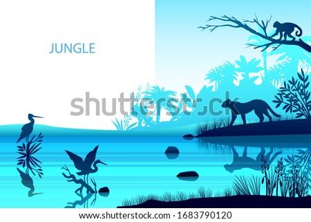 vector rainforest background