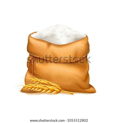 vector realistic bag of flour...