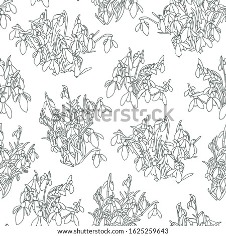 Vector realistic botany snowdrop pattern with outline spring floral. Beautiful clssic design for garden lovers. Nature background. Print, fabric, stationary.