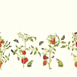 Vector realistic botany tomato garden repeat border with tomato plant, butterfly, frog, ladybug. Elegant summer design, garden lovers, kitchen wear. Wildlife background.