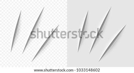 vector realistic cut with a