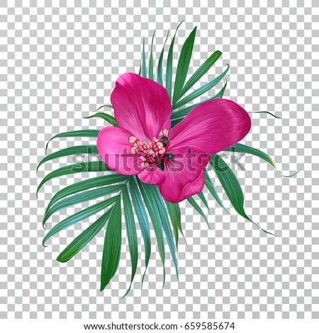 vector realistic flower and