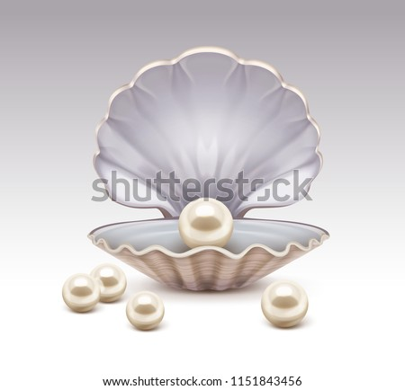 Vector realistic illustration of beige shiny pearl in shell isolated on background