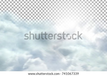 vector realistic isolated