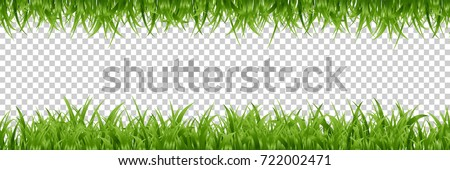 vector realistic isolated green