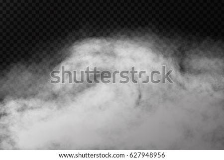 vector realistic isolated smoke
