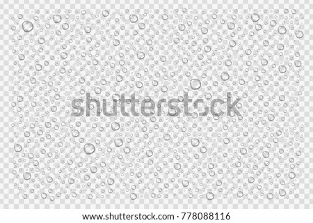 Vector realistic isolated water droplets for decoration and covering on the transparent background.