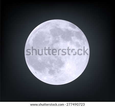 Vector realistic moon.