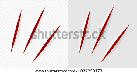 vector realistic red cut with a
