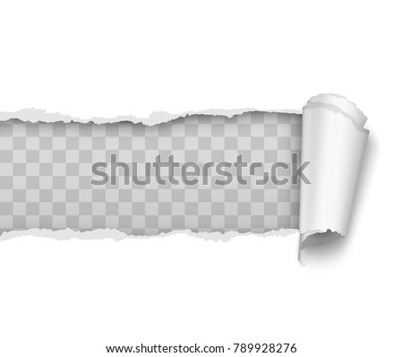 Vector realistic torn and twisted paper strip on white background Photo stock ©