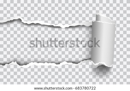 Vector realistic torn paper with rolled edge on transparent background - frame for your text or design ストックフォト ©
