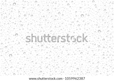 vector realistic water drops