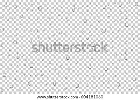 stock-vector-vector-realistic-water-drops-on-transparent-background-rain-drops-without-shadows-for-transparent