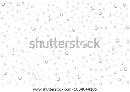 Stock Photo Vector realistic water drops on white background. Rain drops without shadows for transparent surface. Many forms and sizes.