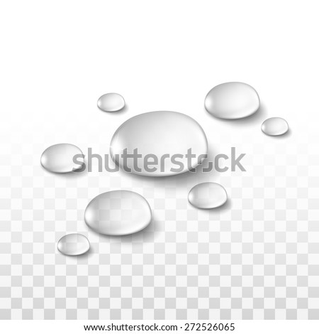 vector realistic water drops