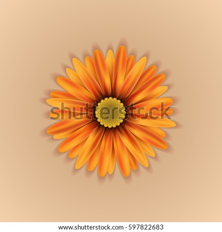 vector realistic yellow orange